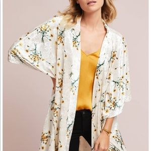 Anthropologists velvet kimono